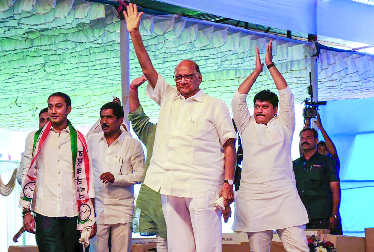 After SP & BSP, NCP decides to  go solo in MP