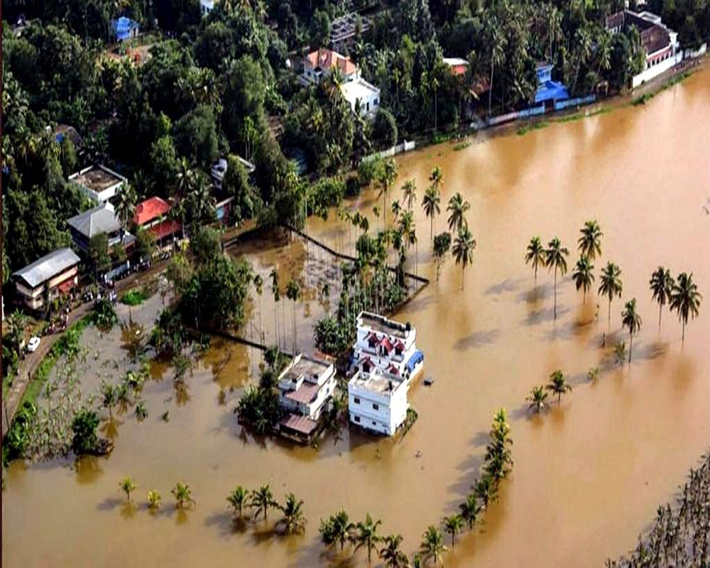 Rs 3,719 cr assistance given to Kerala, Nagaland, Andhra