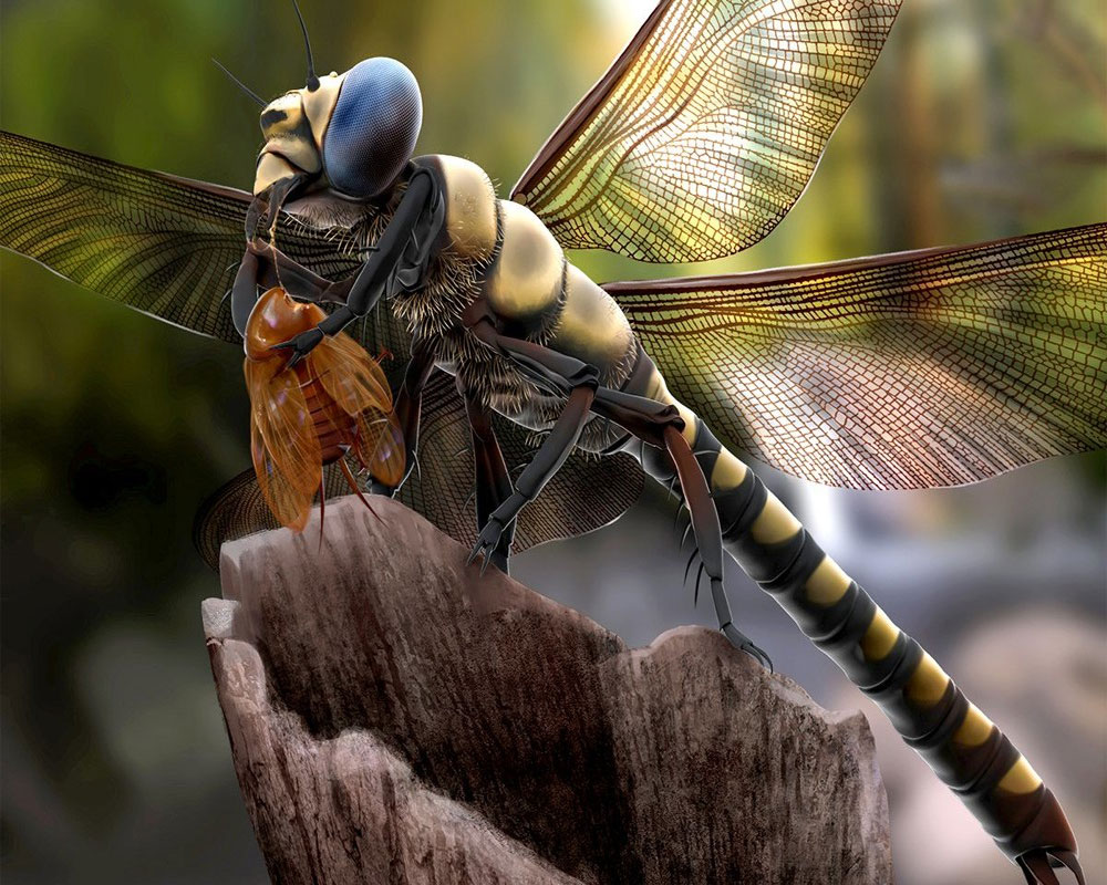 When insects rule the world!
