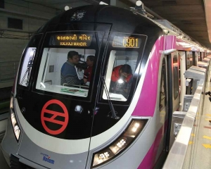Metro services on Magenta line temporarily halted to rescue bird