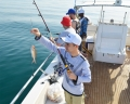 How To Select The Best Service Provider For Fishing In Dubai?