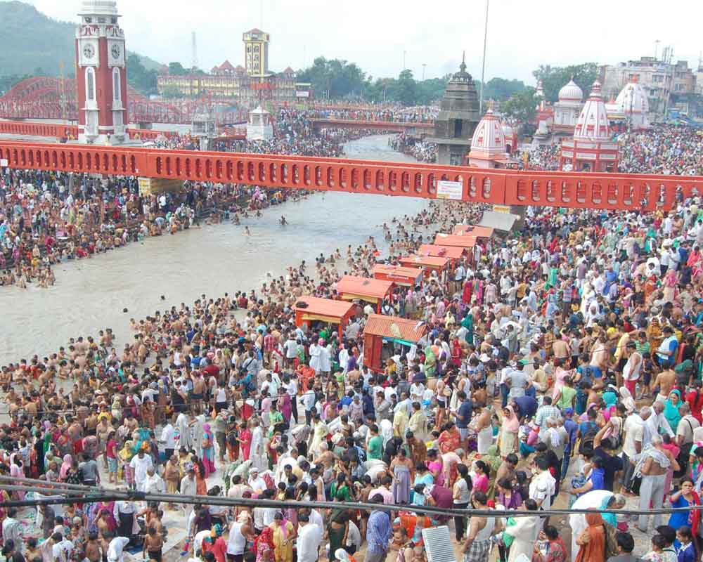 'World's largest seed' centre of attraction at Kumbh