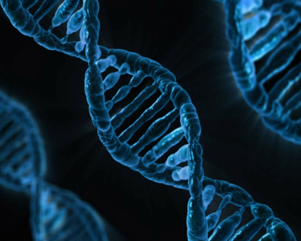 Could DNA screening test become norm to detect genetic diseases?