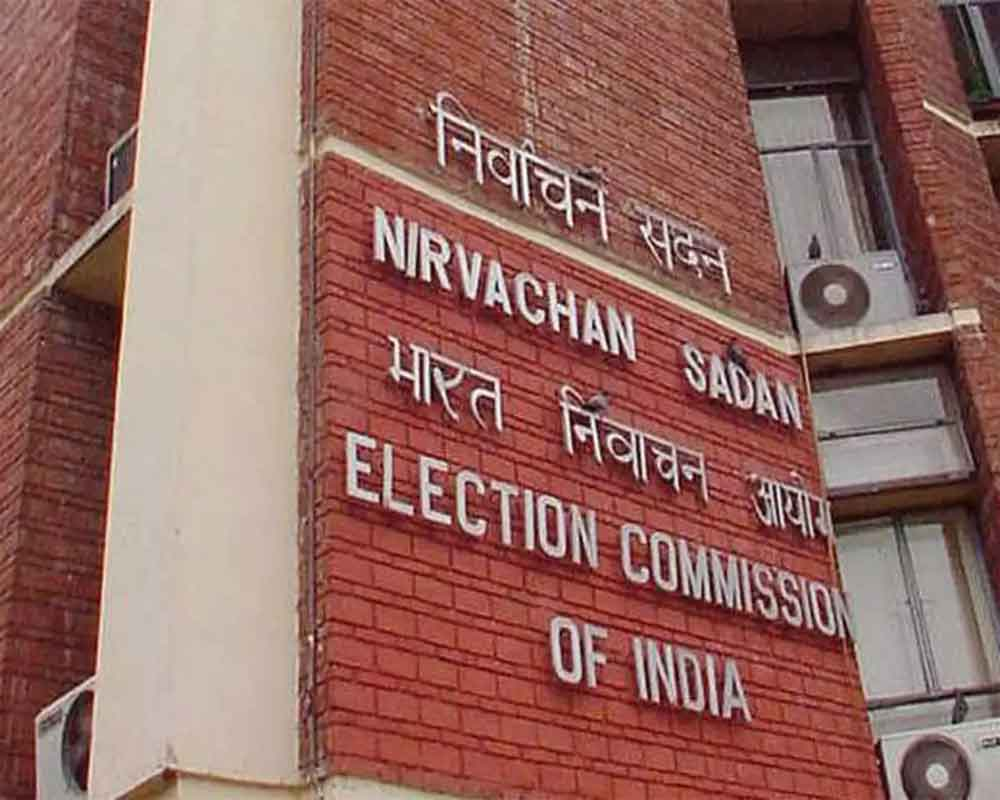 Declaration of Delhi Lok Sabha poll result may get delayed by 5-6 hours: Chief Electoral Officer
