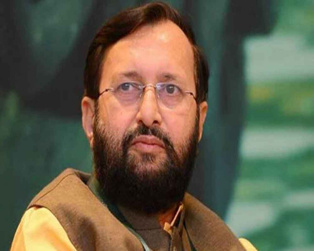 Different Cong voices on J-K reflects 'directionless politics', says Javadekar