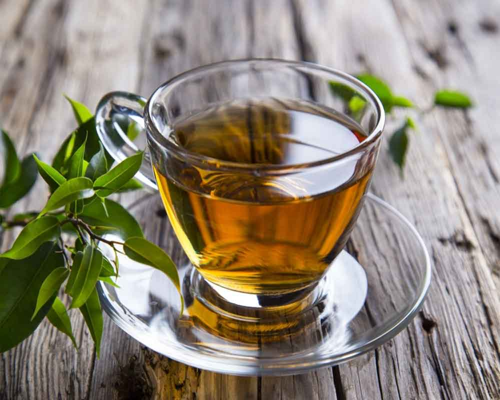 Green tea compound may help fight 'superbugs': Study