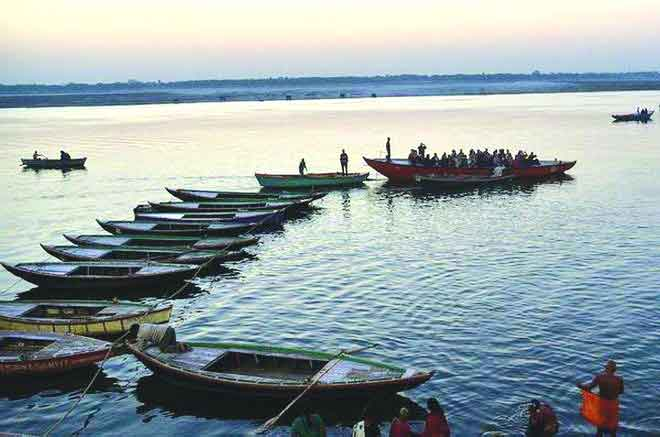 Haldia waterways may put Varanasi turtles in deep waters