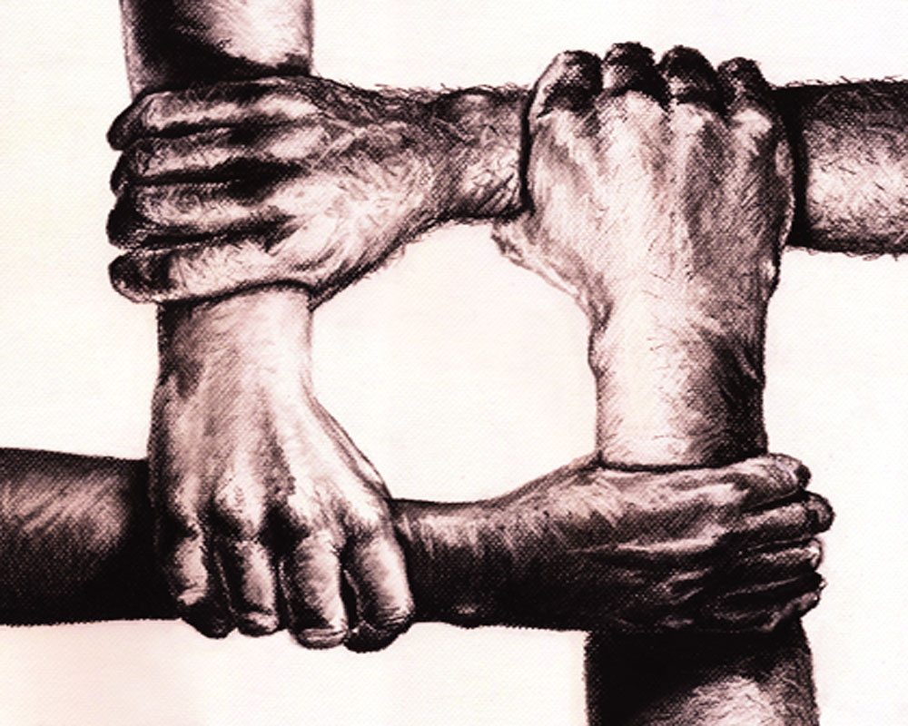 How to attain human unity