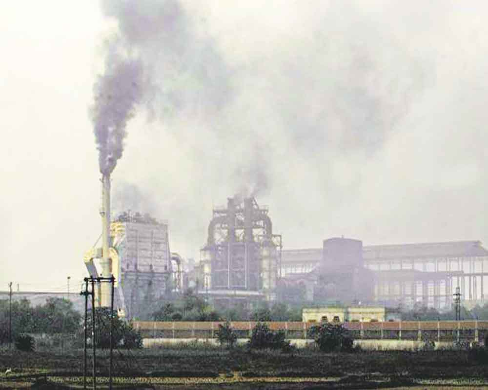 India's carbon sink