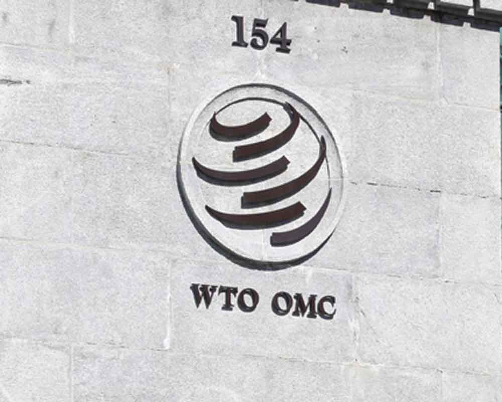 India takes EU to WTO's safeguard committee over duty on steel products