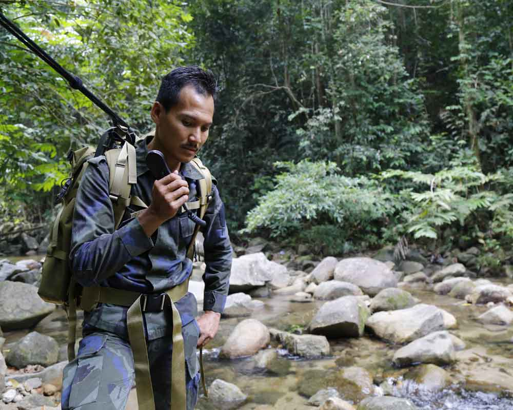 Malaysian trackers shout London girl's name in jungle search