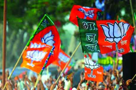 Image result for bjp ban