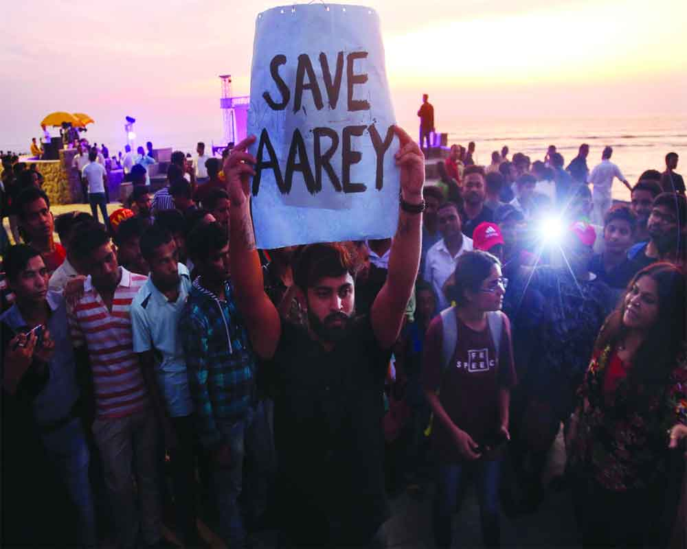SC saves Aarey for now