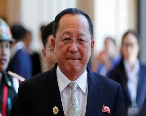 North Korea foreign minister calls Pompeo 'poisonous plant'