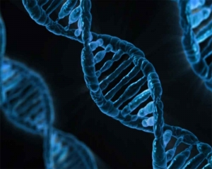 Not just cancer, DNA changes may trigger other diseases too