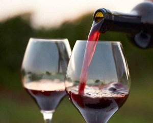 Red wine compound may help Mars explorers preserve muscle mass: Study