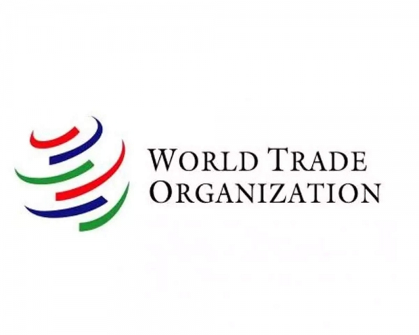 Global trade will plunge by up to a third in 2020 amid pandemic: WTO