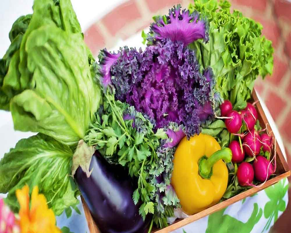 Eating more vegetables will not cure prostate cancer: Study