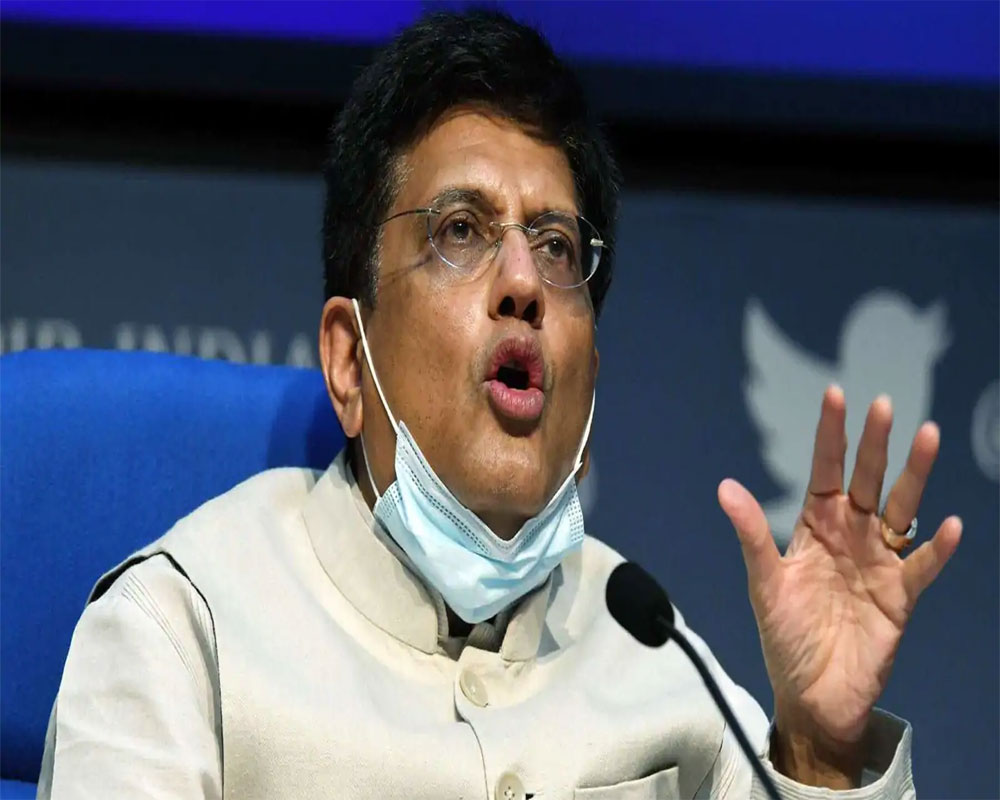 Goyal holds talks with auto industry players, aims for 20% modal share by 2021-22