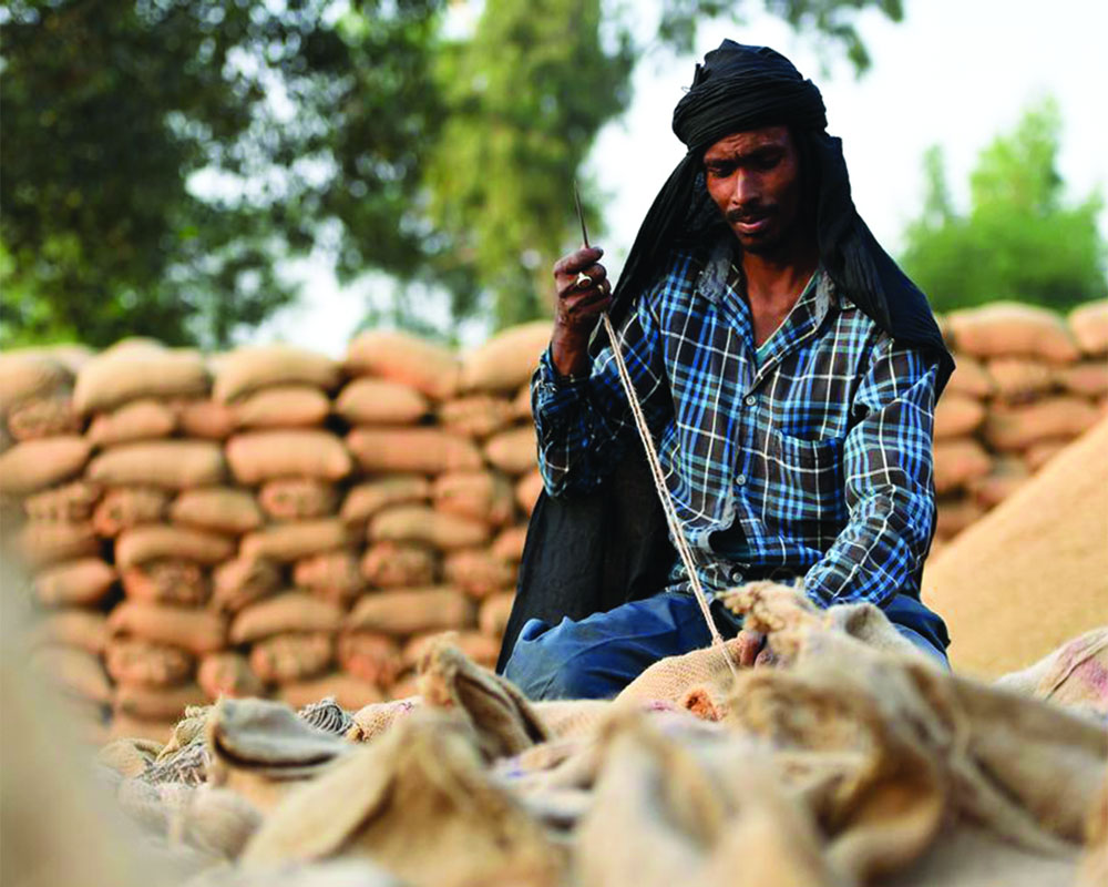 Livelihoods in the lurch