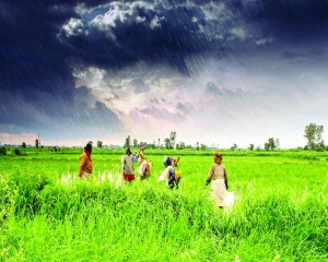 Climate change to impact India's GDP, reveals report