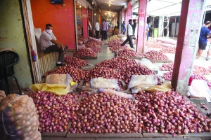 Govt sets stock limit for onion traders to check its prices