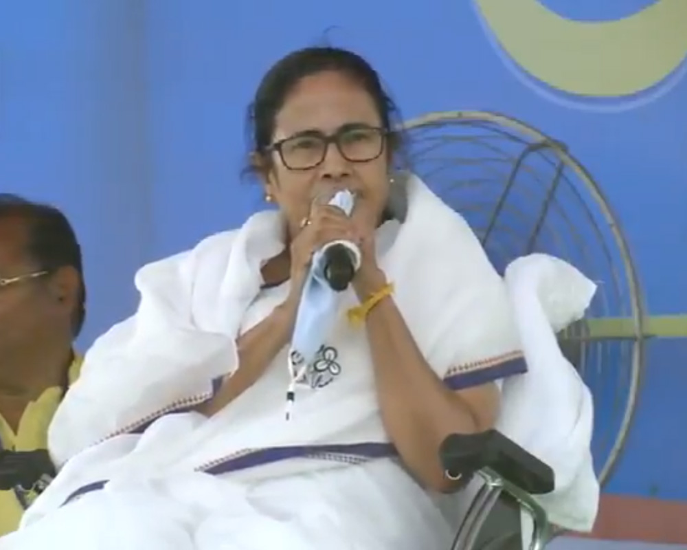 PM's growing beard inversely proportional to the state of country's economy: Mamata