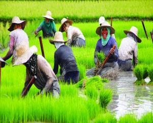 Agriculture a better bet for Eastern India