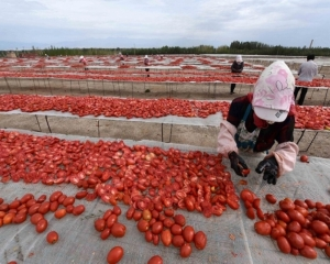 China demands US lift Xinjiang cotton, tomato import ban