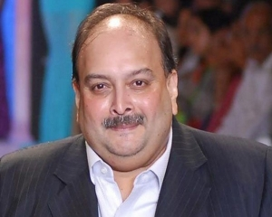 Dominica court stops removal of Choksi from country: Report  New