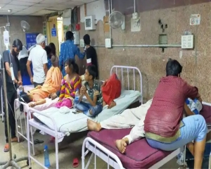 Over 500 fall ill in east Delhi after consuming food prepared with buckwheat flour