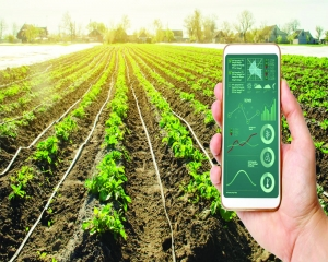 Precision farming: Meeting the challenges of food safety