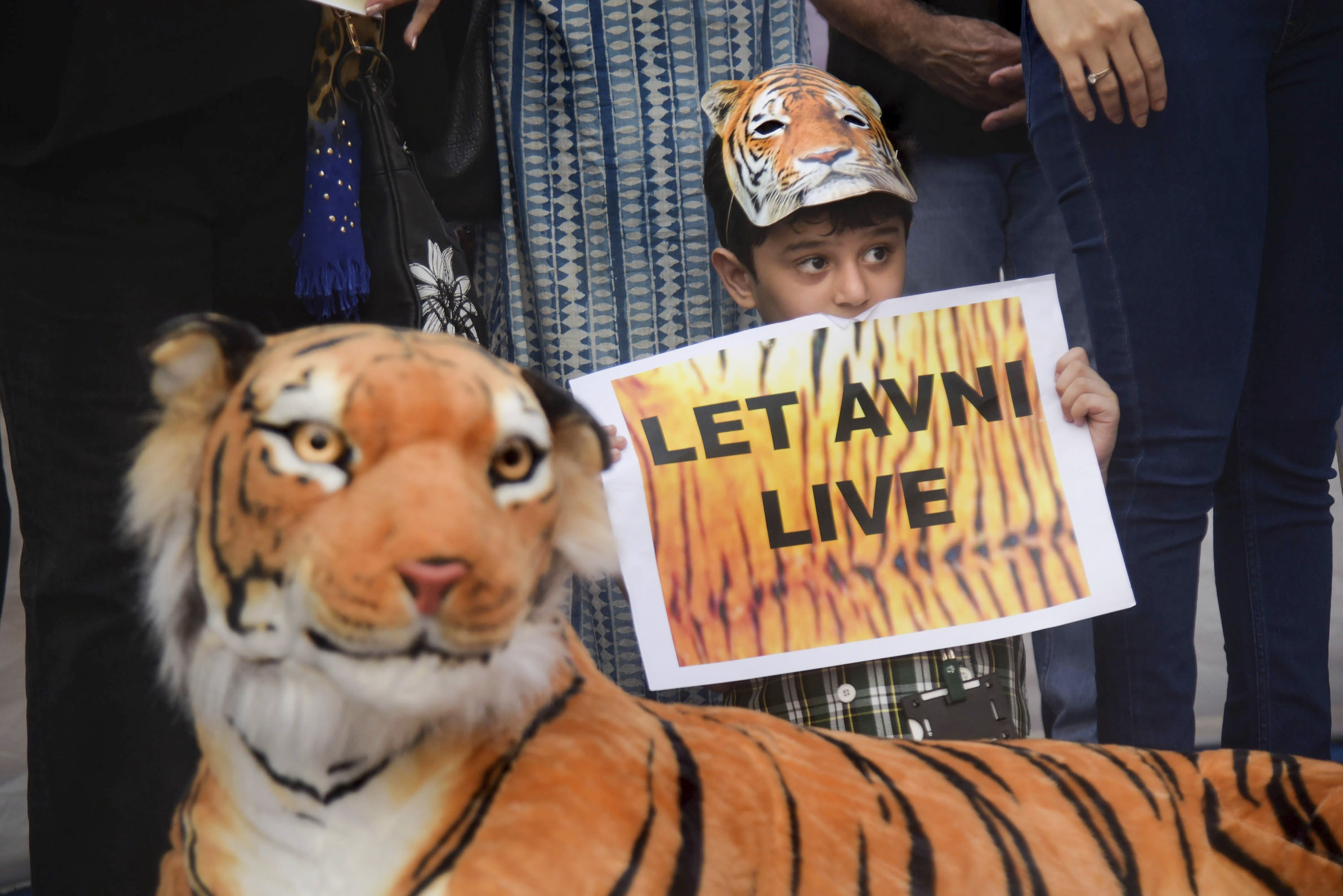 A child displays a placard during a protest against the 'shoot at sight' order for the maneater tigress T1 (Avni), in Mumbai - PTI