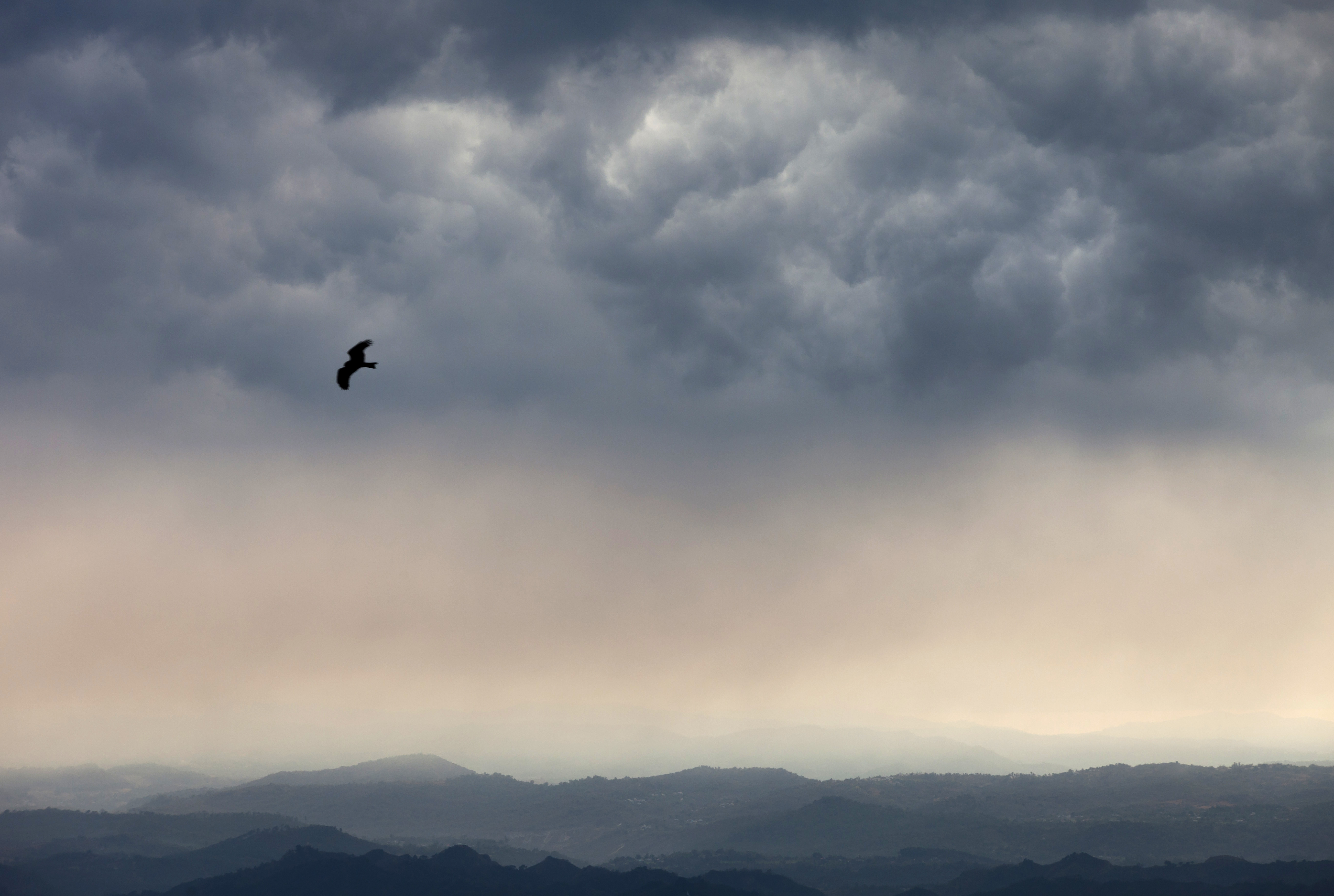 A kite flies as the dark clouds gather over the Kangra valley in Dharmsala - AP