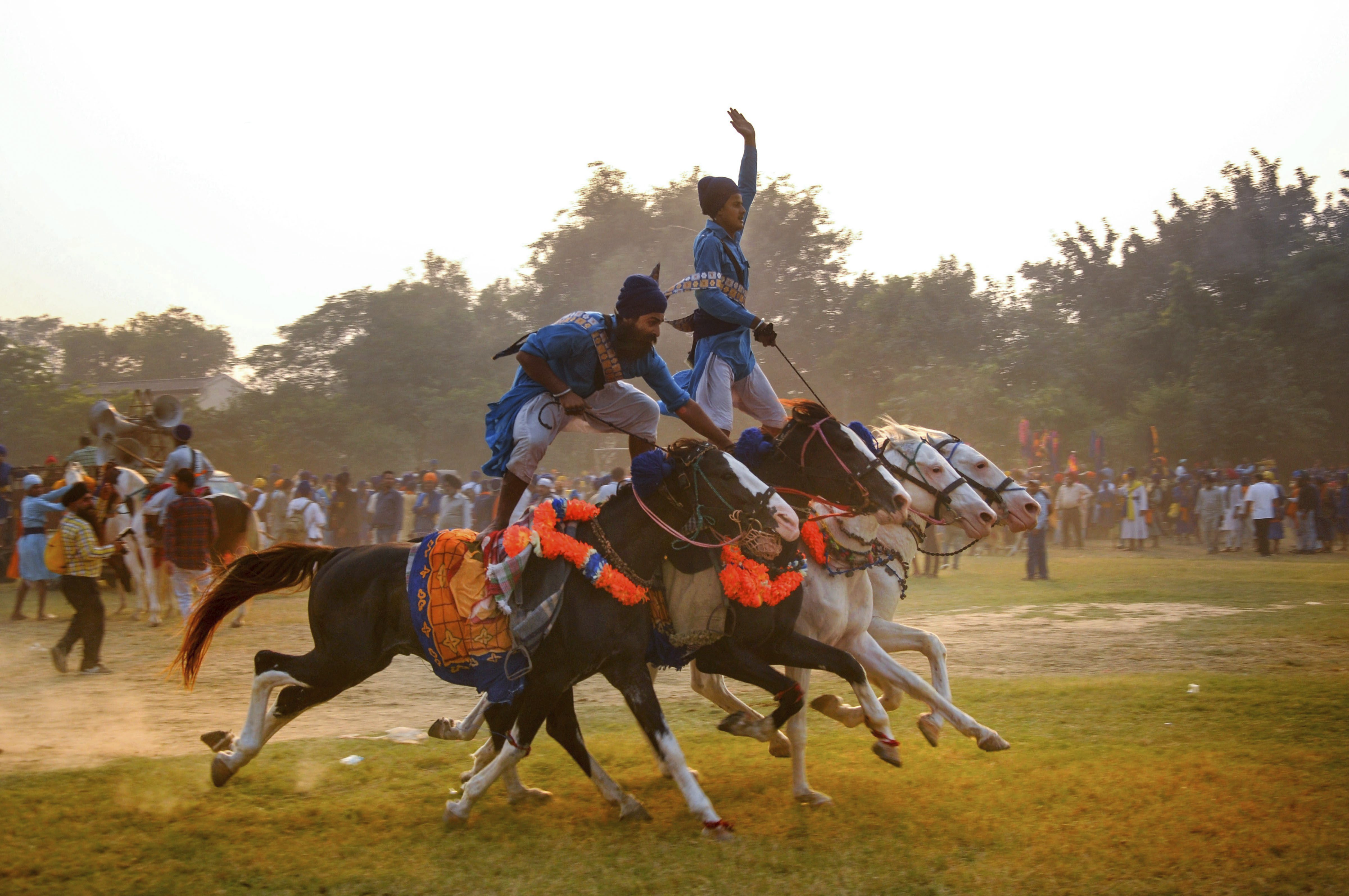 Nihangs or Sikh religious warriors display their horse-riding skills during celebration of the 'Fateh Divas' or 'Victory Day', in Amritsar - PTI