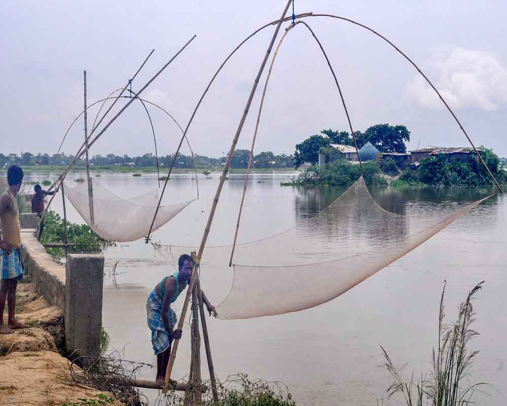Villagers catch fish in flood waters, in Morigaon district